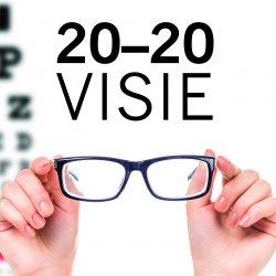 2. 20-20 Vision